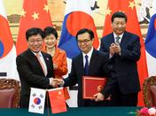 朴槿惠大統領・習近平主席、韓中FTA妥結を宣言
